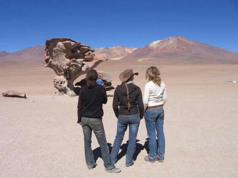 salzwüste-salar-de-uyuni-bolivien-arbol-de-piedra