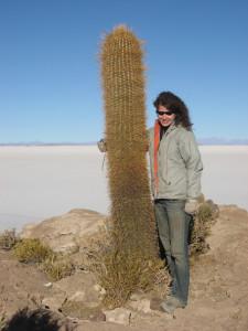 salzwüste-salar-de-uyuni-bolivien-fischinsel-kaktus