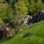gernsbacher-runde-wandern-heuhütte
