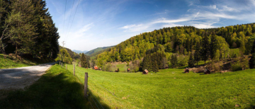 gernsbacher-runde-wandern-heuhüttental