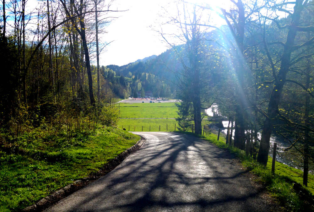 Der Parkplatz ist in Sicht. Der letzte Teil der Wanderung führt über eine wenig befahrene Asphaltstraße.