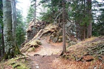 tegernsee-schliersee-wandern-hohenwaldeck-bruecke