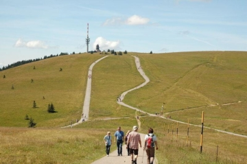 wandern-feldbergsteig