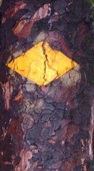 Die gelbe Raute ist das Zeichen für den Brennersteig.
