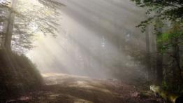 gipfel-tour-simonswald-beitragsbild