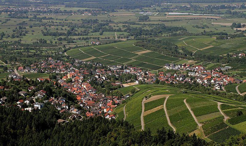 Der Blick über die ganze Umgebung von der Yburg aus.