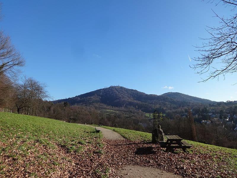 Der Panoramaweg Baden-Baden führt dich über aussichtsreiche Wege rund um die Stadt.