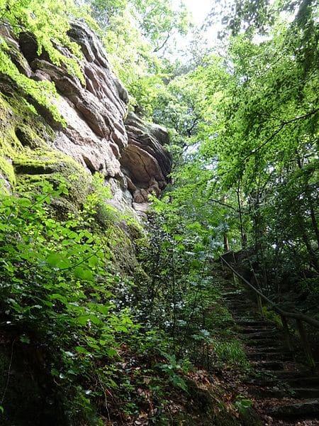 Der idyllische Waldpfad hinauf zum Pulverfelsen.