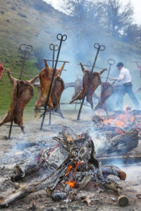 region-aysen-in-chile-asado-al-palo